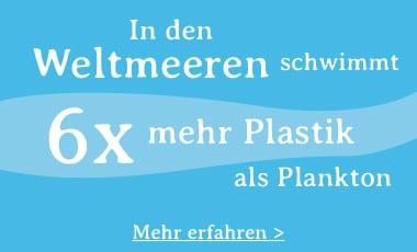 Osmoseanlage und Plastik