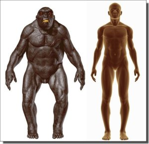 Neanderthals the super predator, compared with humans the regular predator