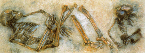 Burials from Qafzeh cave in Israel. They were some of the first humans to migrate out of Africa