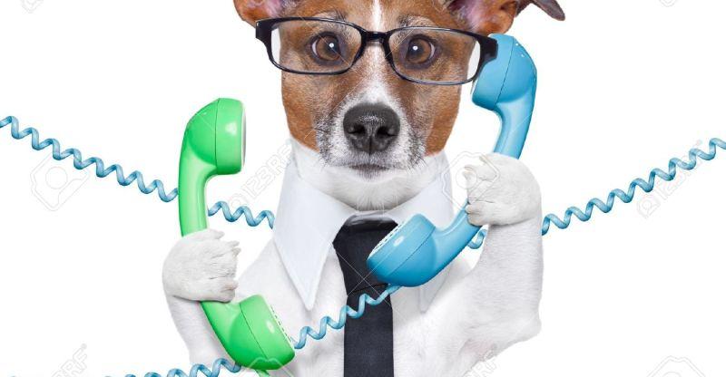 broker telefon