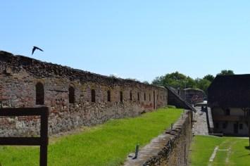 cetatea Fagaras - filu ro (6)