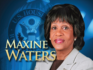 Image result for rep maxine waters