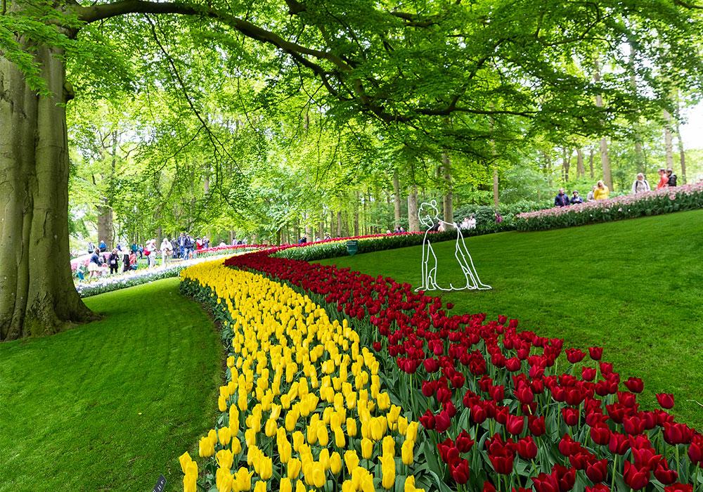 Tulipani colorati a Keukenhof