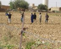 Crédit Agricole Mauritanie