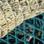 Mauritanie-France-pêche:  l'avocat William Bourdon monte au filet