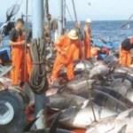 Mauritanie-UE: l'accord de pêche validé en dépit de l'opposition espagnole