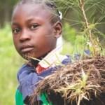 Addis Abeba: quelle politique foncière pour l'Afrique