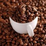 Nigeria : La chute des cours du pétrole menace la culture du Cacao