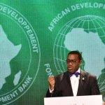 Le président Adesina de la BAD appelle à des mesures audacieuses pour éclairer l'Afrique