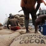 Côte d'Ivoire: -80% des exportations, Le scénario catastrophe du Cacao