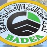 La BADEA se réunit à N'Djamena