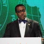 Adesina tend la main à la Nouvelle banque de développement pour éclairer et électrifier l'Afrique