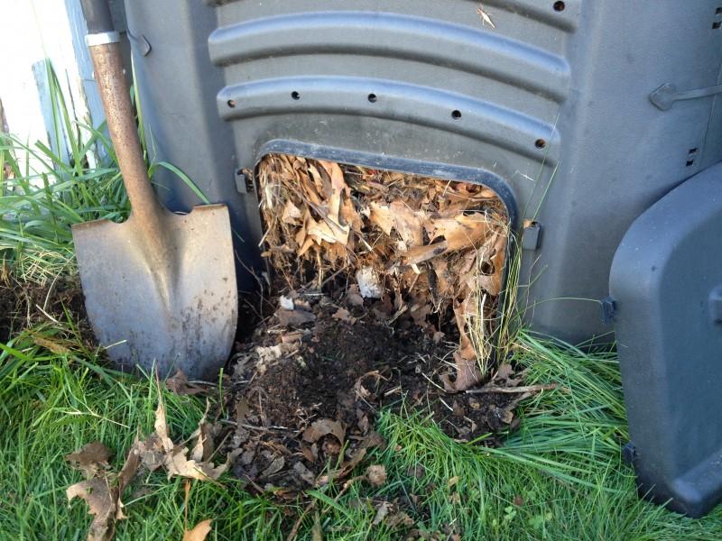 Fresh Compost