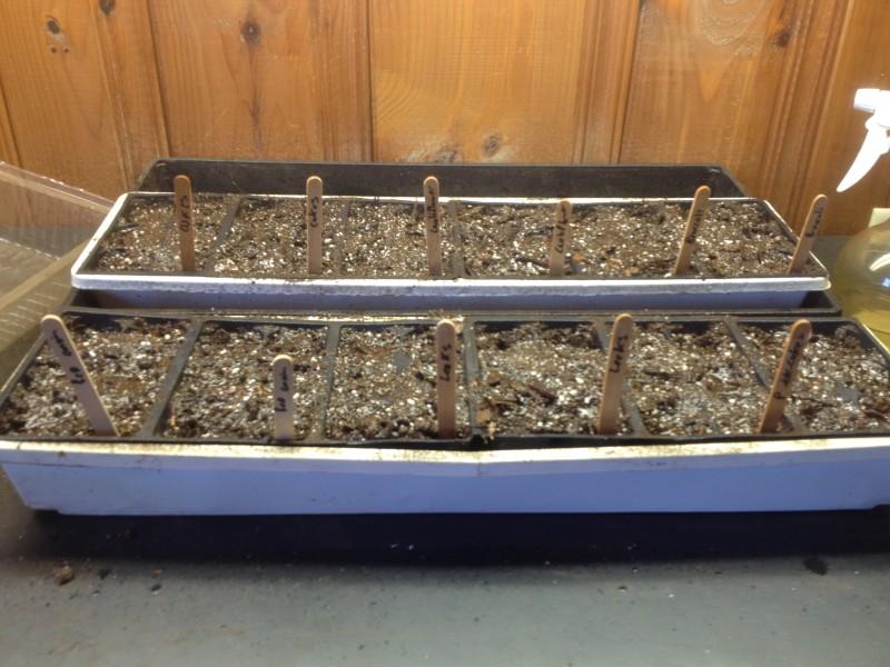 Soil tray