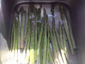 Foraging and Preserving Wild Asparagus