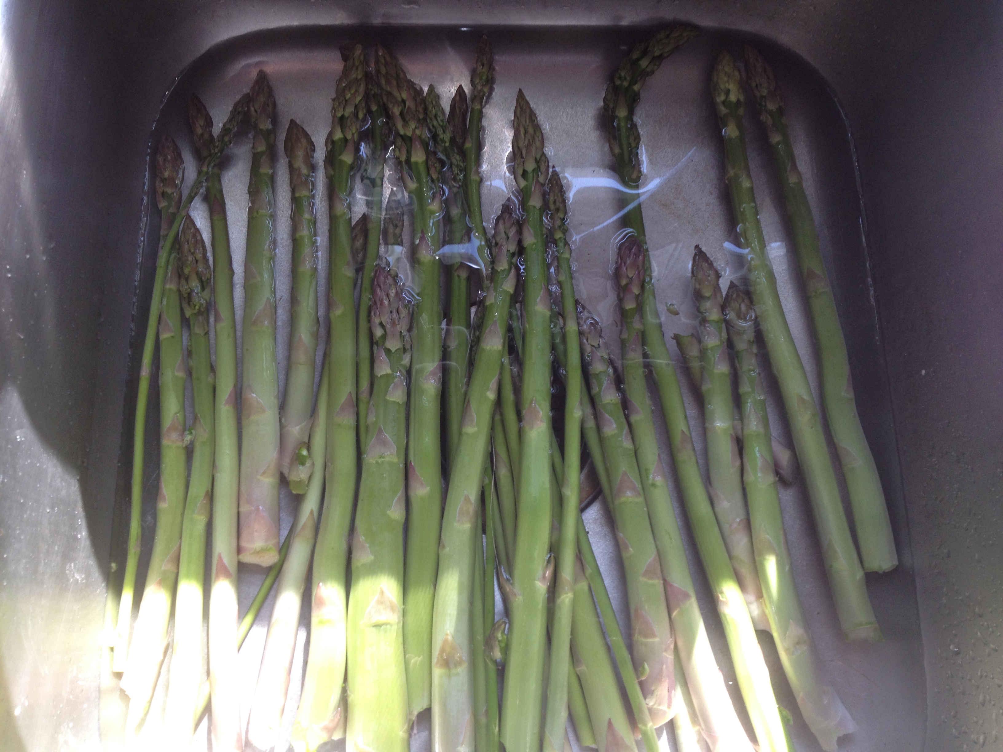 Washing Wild Asparagus