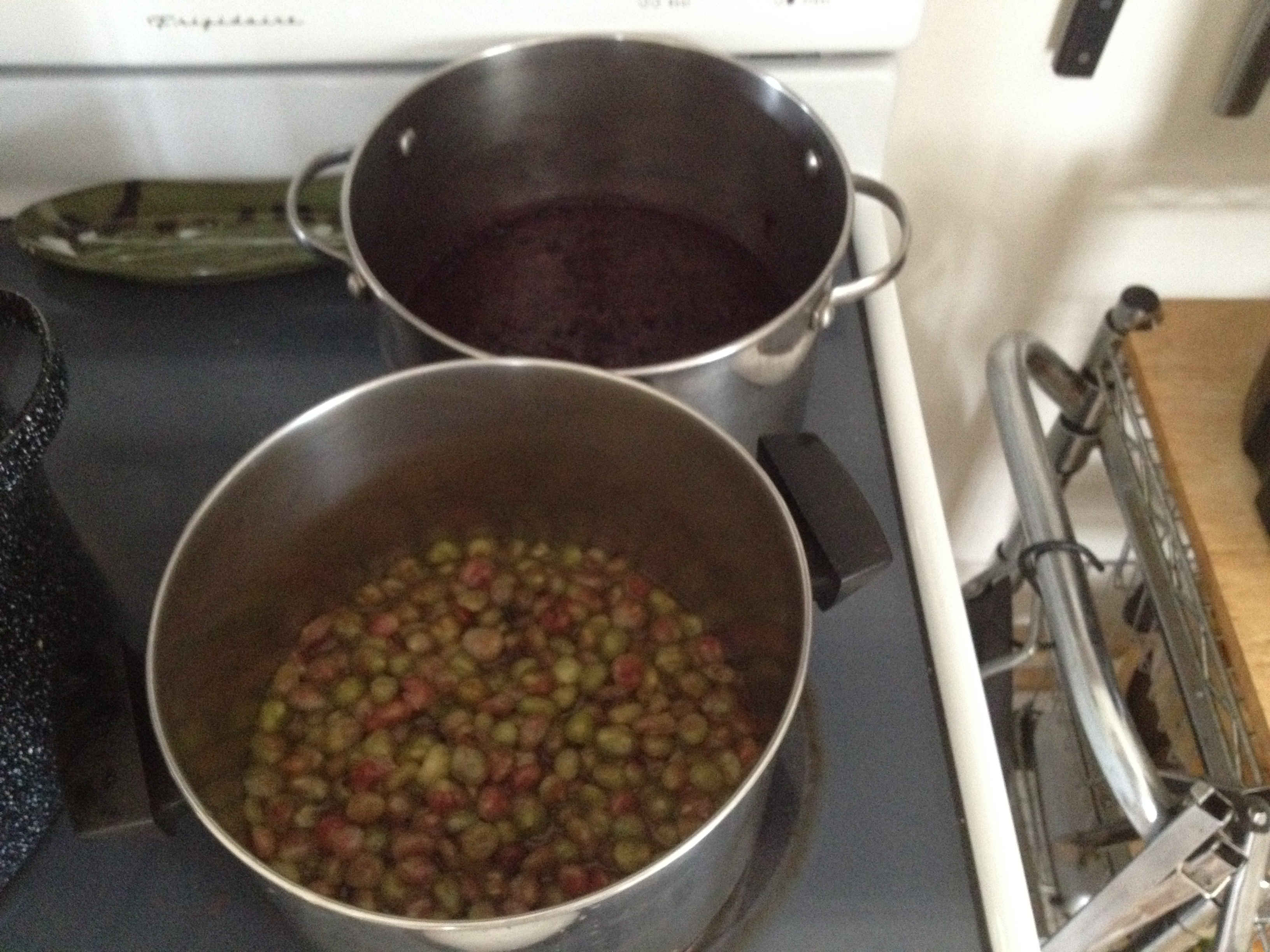 cooking wild grapes