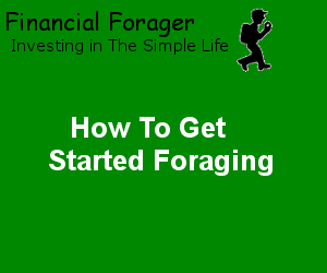 How To Get Started Foraging