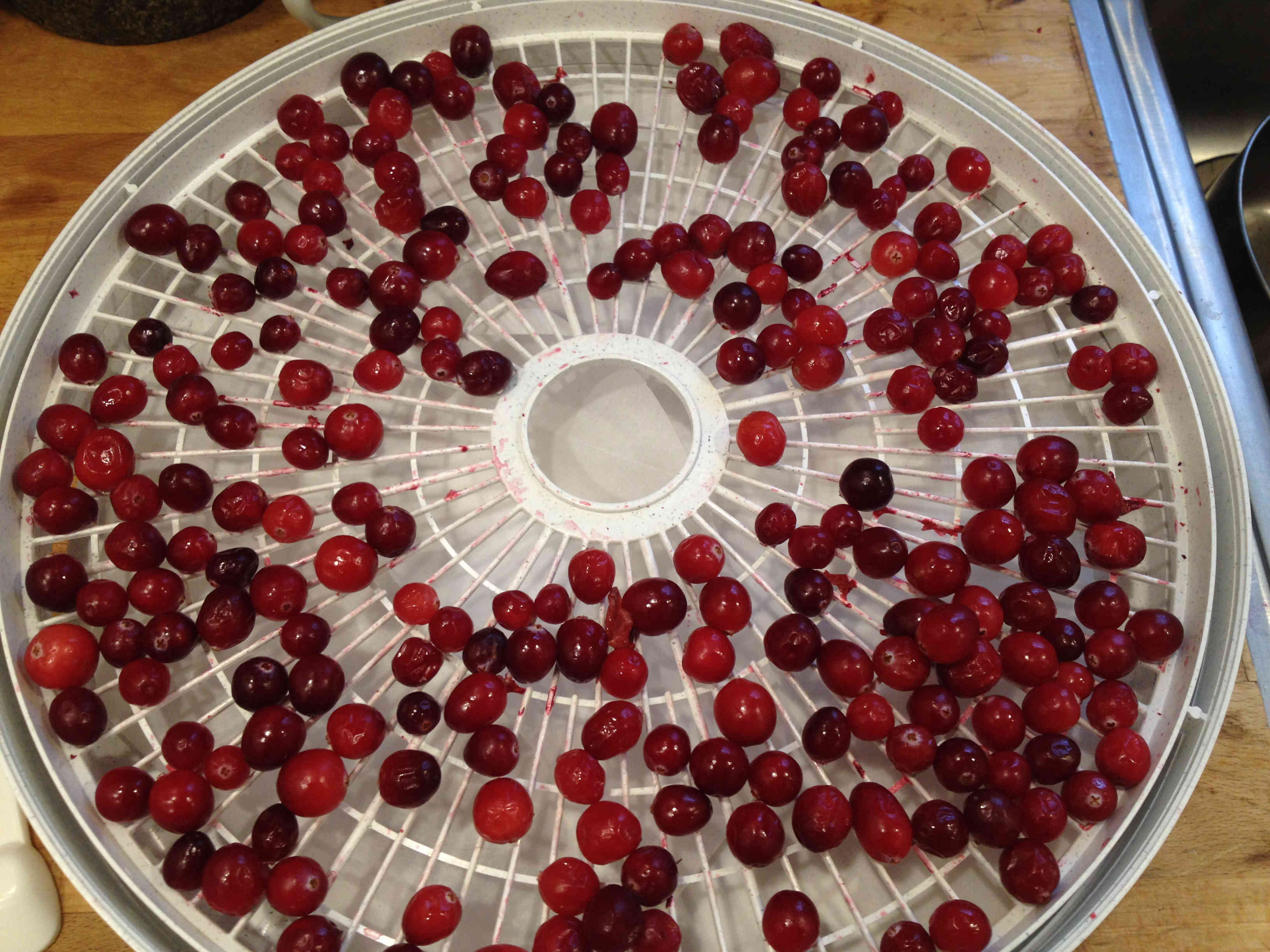 Whole Cranberries on tray