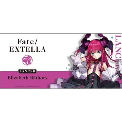 Fate/Extra Mug