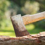 Wycinka drzew nowe przepisy 2017 bez zezwolenia wytniesz drzewo na własnej działce