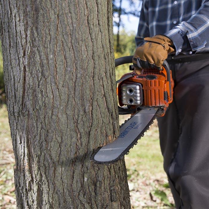 wycinka drzew na własnej działce bez zezwolenia nowe przepisy od 2017