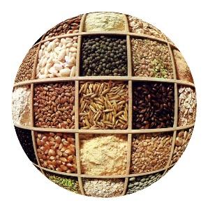 https://i2.wp.com/www.finanzalive.com/wp-content/uploads/2008/05/cereali_ns.jpg
