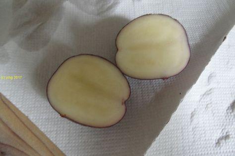 """Kartoffel """"Cheyenne"""" aufgechnitten am 26.08.2017"""