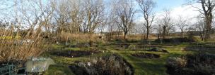 Der Garten am 26.12.2017