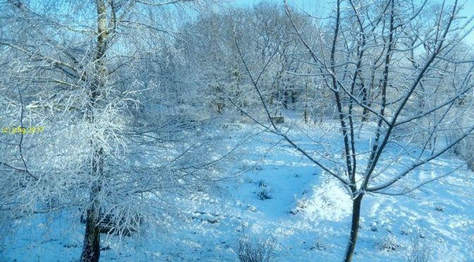 So Könnte der Winter sein