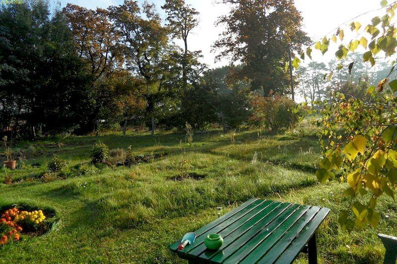 "Gartenblick nach Osten mit Beet ""Wolfgang"" Bild 2September 2013"