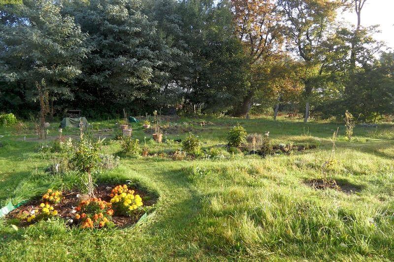 "Garten mit Beet ""Wolfgang"" September 2013"