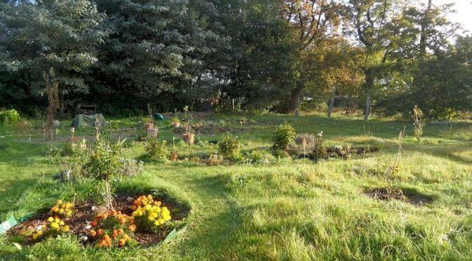Unser Rietzer Garten