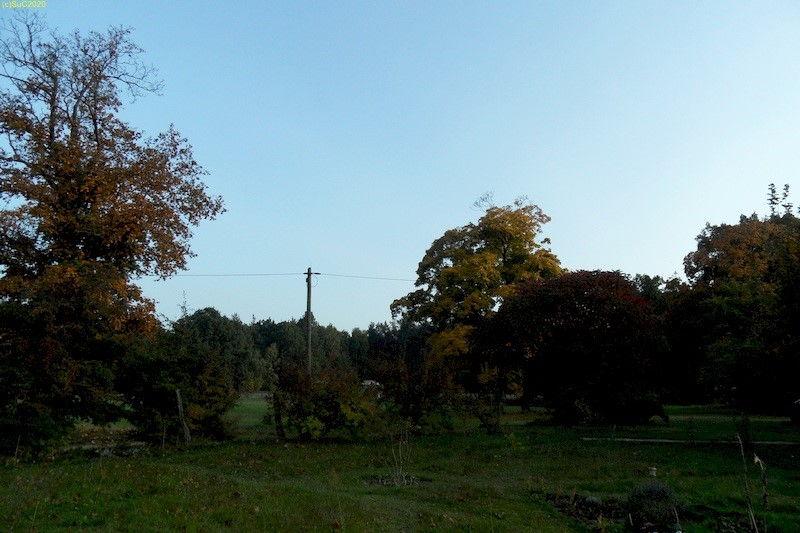 Abendliche Blick nach Osten Oktober 2013