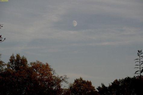Der Mond 44. Kalenderwoche 2014