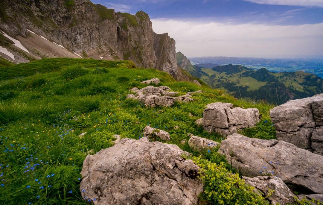 Rocks in apline meadow in Switzerland Mount Pilatus hiking.