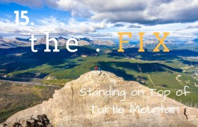 The Fix 15: Standing on Top of Turtle Mountain