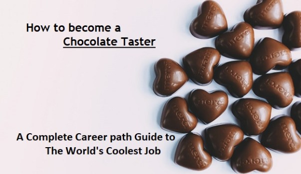 How to become a Chocolate Taster - Career Path Guide