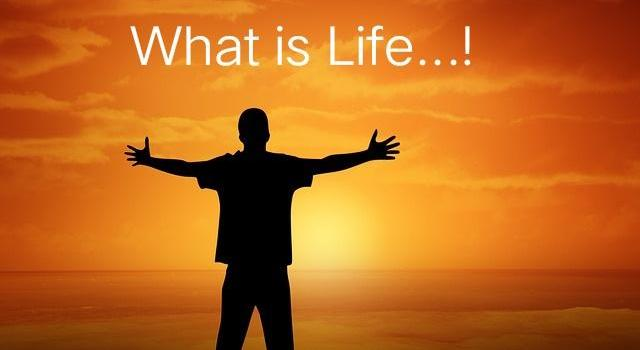 what is life its meaning in hindi