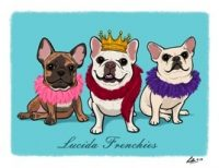 Lucida Frenchies.jpg