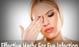 7 Effective Herbs For Eye Infection