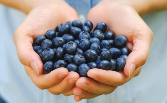 Blueberries for Breast Cancer