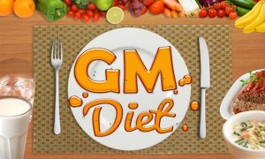 The GM Diet Plan - Lose Weight Quickly