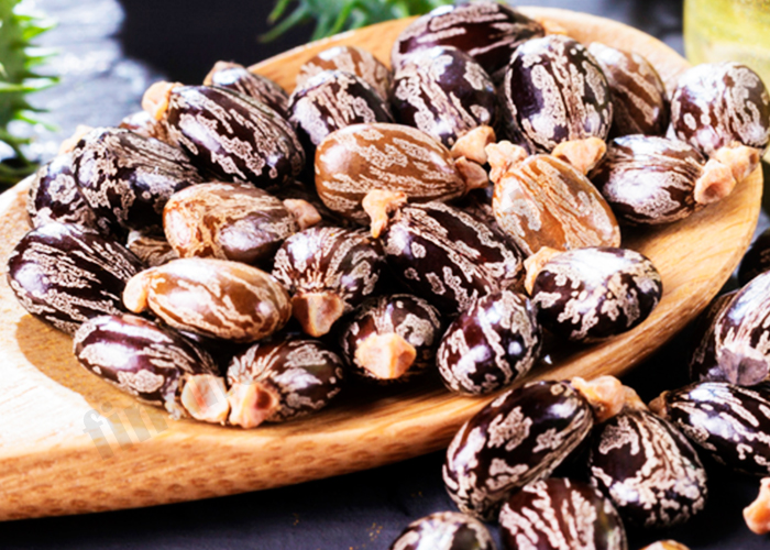 Castor Oil for Polycystic Ovaries Syndrome (PCOS)