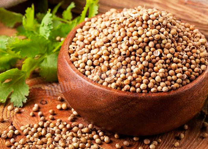 Coriander Seeds for Blood Clots during Period