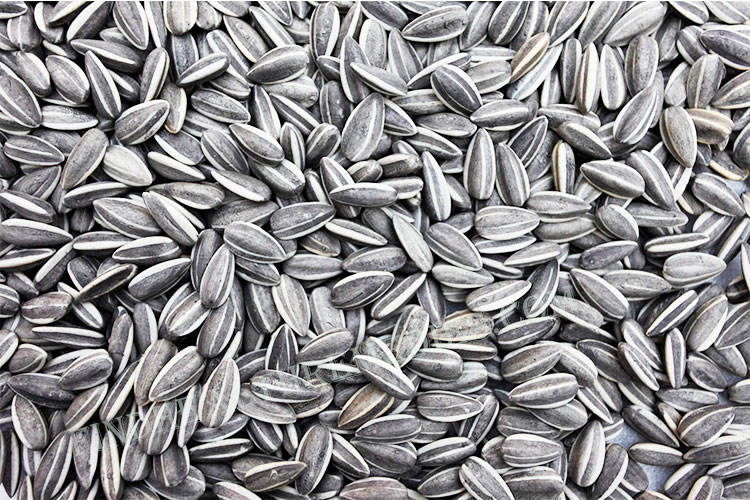 Seeds forLower and High Blood Pressure