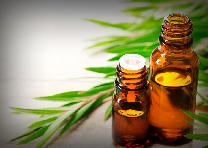 Tea Tree Oil for Skin Infections
