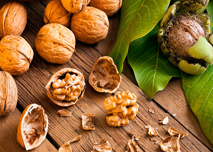 Walnuts for TB (Tuberculosis)