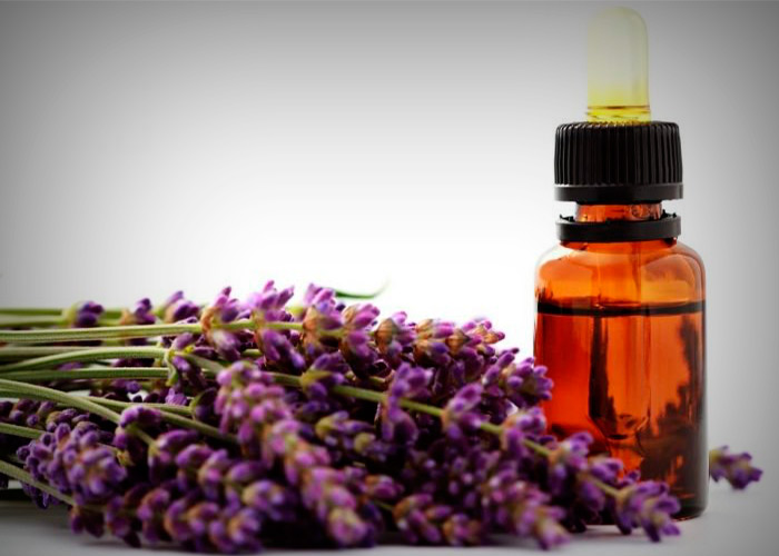 Lavender Oil to Stop Post-Nasal Drip