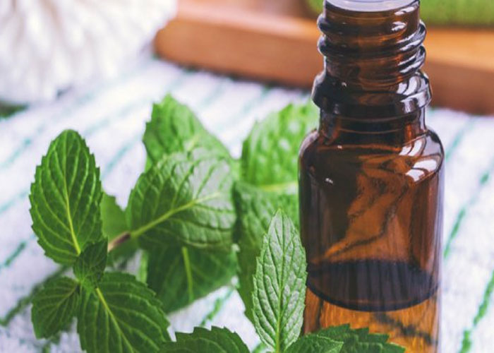Peppermint Oil for Achillen Tendon